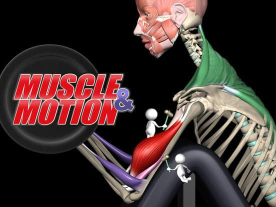 photo du logo Muscle & Motion